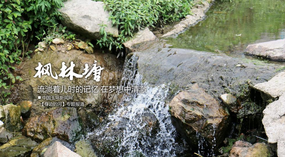 【身边的河】枫林塘:流淌着儿时的记忆 在梦想中清澈